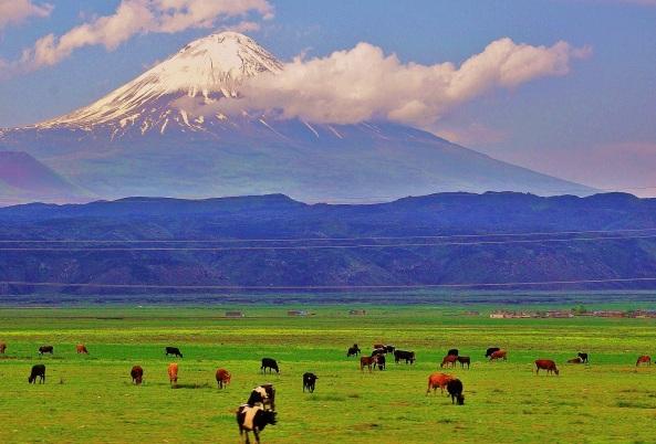 Արևմտյան Հայաստանի Բայազետ քաղաքը